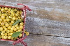 Yellow fresh cherry with leaves on cardboard box in red and white fabric,on old white paint background. Top view, copy Stock Photos