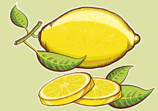 Yellow fresh lemons with green leaves isolated Royalty Free Stock Images