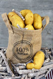 Yellow Fresh potatoes in a jute bag Stock Photography