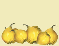 Yellow fresh quinces background Stock Photography