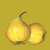 Yellow fresh quinces background Royalty Free Stock Photo
