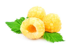 Yellow fresh raspberry with a leaf. Isolated on the white Stock Photography
