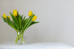 Yellow, fresh tulips in a vase on a wooden table. Royalty Free Stock Photography