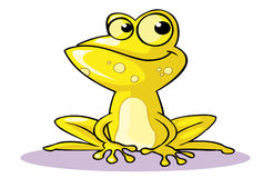 Yellow frog Stock Image