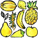 Yellow fruits and vegetables. Watercolor hand drawn fruits and vegetables. Stock Photography