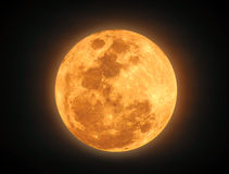 The yellow full moon on black background stock image