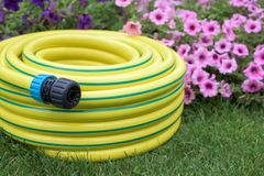Yellow garden hose pipe. Yellow plastic hose pipe on a grass stock image