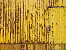 Yellow gate. In Marghera, Venice Royalty Free Stock Image