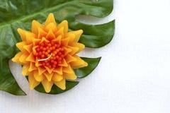 Yellow Gazania flower background Stock Photo