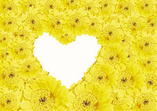 Yellow gerber daisies and heart shaped copy space. Background of yellow gerber daisies and heart shaped copy space royalty free stock photo