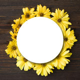 Yellow gerber a flowers round frame Royalty Free Stock Images