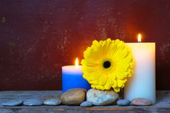 Yellow Gerbera And Candles. Still life with white and blue burning rustic candles, stones and yellow gerbera flower on old grungy background with copy space Stock Image