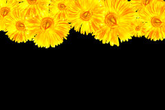 Yellow Gerbera framework. Natuer flower framework in valentine royalty free stock images