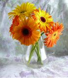 Yellow gerbers. Bunch of flowers from yellow gerbers in jug royalty free stock photos