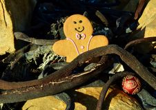 Sunny Gingerbread in dried kelp on the beach, yellow and black background red and pink Christmas in July royalty free stock photography