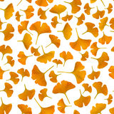 Yellow gingko leaves on white background Stock Photography