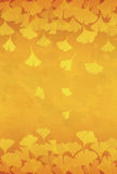 Yellow ginkgo leaves background illustration Stock Images