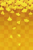 Yellow ginkgo leaves in orange checkered background Royalty Free Stock Photo