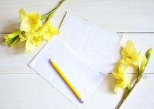 Yellow gladiolus and card with pencil on wooden background. Royalty Free Stock Photo
