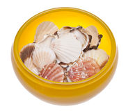 Yellow Glass Bowl Full of Shells Stock Images