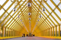 Yellow glass corridor stock images