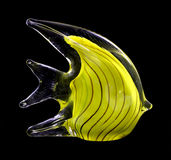 Yellow glass stripped fish Royalty Free Stock Photography