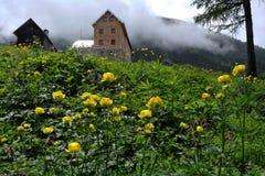 Dumlerhutte, Totes Gebirge, Oberosterreich, Austria royalty free stock image