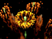 Yellow glowing flower fractal Stock Photo