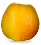 Yellow golden apple Royalty Free Stock Image