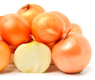Yellow golden onion Royalty Free Stock Photos