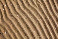 Yellow golden sand on sea beach top view close up, ribbed dry sand surface pattern, wavy curved diagonal lines texture royalty free stock images