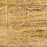 Yellow golden straw bale showing texture and looses straws Royalty Free Stock Photos