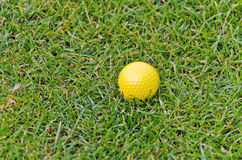 Yellow golf ball Stock Photography
