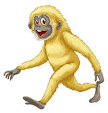 A yellow gorilla Royalty Free Stock Image