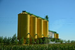 Yellow grain tanks Stock Photography