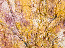 Yellow granite rock texture Stock Images