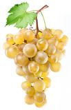 Yellow grape Royalty Free Stock Photography
