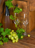Yellow grape, champagne and wineglasses Stock Photos