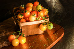 Yellow Grape Tomatoes in Natural Light Royalty Free Stock Image