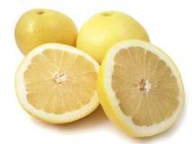Yellow grapefruit stock photos