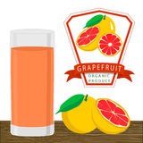 The yellow grapefruit. Vector illustration logo for whole ripe fruit blue grape green stem leaf,cut sliced. Grape drawing pattern consisting of tag label peel Royalty Free Stock Images