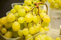 Yellow grapes Royalty Free Stock Image