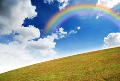 Yellow grass landscape. Green grass landscape blue sky for Backgrounds and design Yellow rainbow royalty free stock image