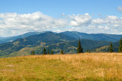 Yellow grass meadow, mountains in background Stock Images