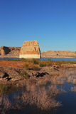The yellow grass on shore. Covered with yellow grass shore of Lake Powell in the U.S Stock Images