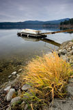 Yellow grass on the shore and a dock. Yellow grass and rocks on the shoreline and a ramp leading to a dock with a boat Royalty Free Stock Image