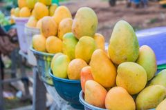 African red, yellow and green mangoes 4 stock images