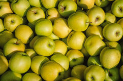 Yellow and green apples Royalty Free Stock Photography