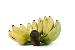Yellow and green banana Stock Photos