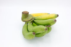 Yellow and green bananas Stock Image